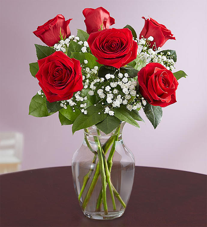Love's Embrace 6 Red Rose Vase - Bridgewater Florist