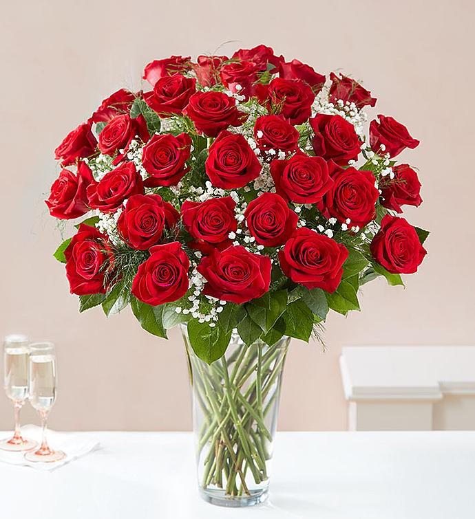 Luxury Rose Bouquet 36 Roses 3 Dozen Main Florist
