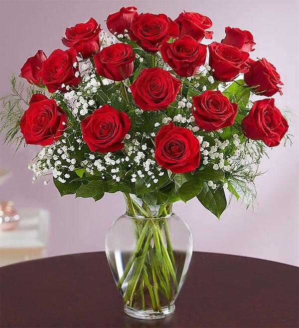 Online Sale 2 Dozen Red Rose Vase Only 4 In Stock A Bella Mia Flowers Boston